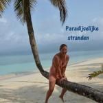 Paradijsjes van zand