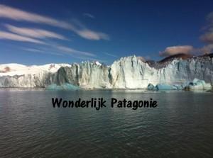 Wonderlijk patagonie