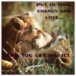 Liefde voor de leeuw