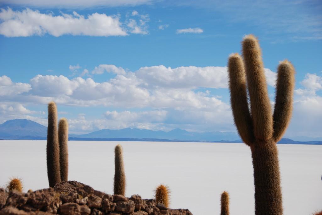 Salar de Uyuni in Bolivia op 3650 m hoogte.