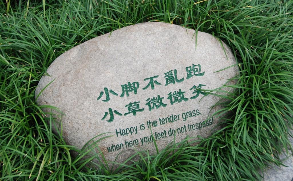 Wat is het gras blij wanneer je niet hier loopt :)
