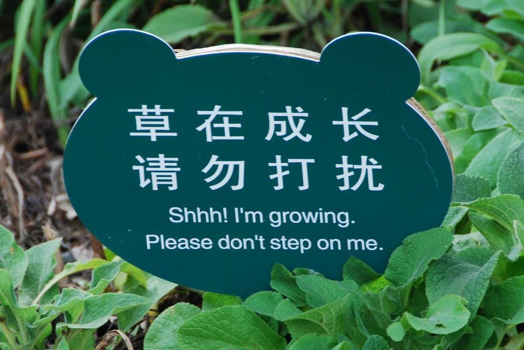 Eh stil, ik groei! :)