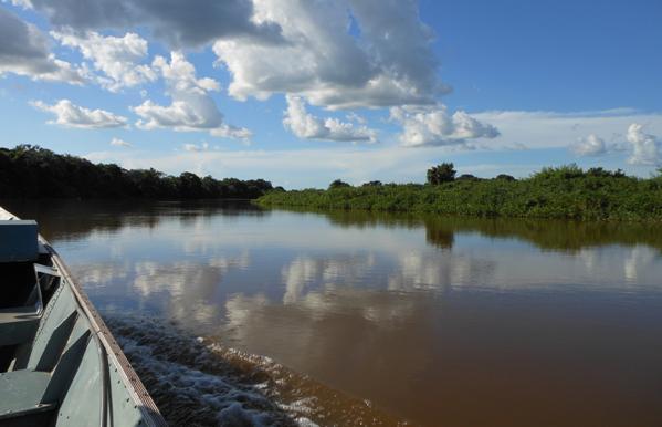 De Pantanal, wat een juweel!