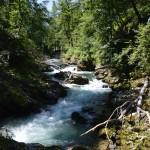 Een dag in de prachtige natuur van Slovenië