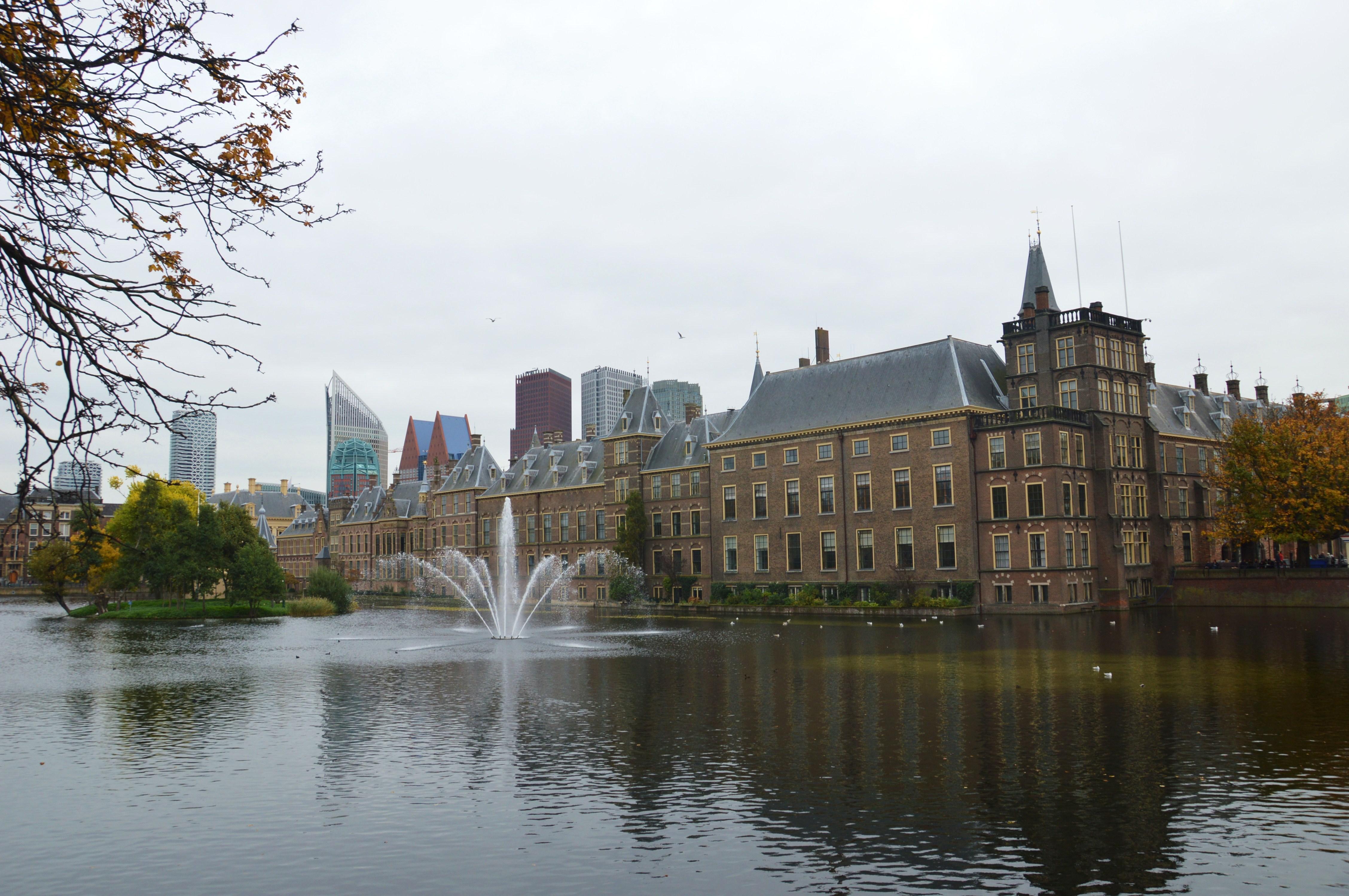 Vier fijne plekken in Den Haag