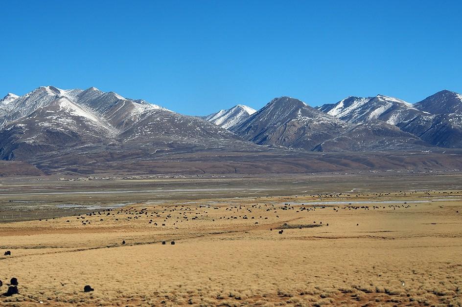1-Tibet-Trein