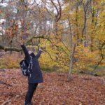 3 mooie najaarswandelingen in Nederland