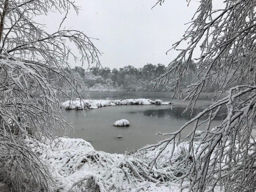 winterwandeling Nederland