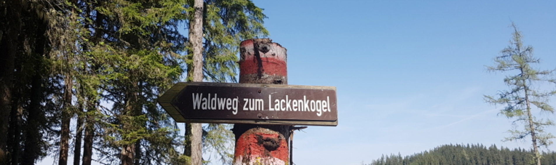 Gastblog: 3 leuke bergwandelingen in de omgeving van Flachau