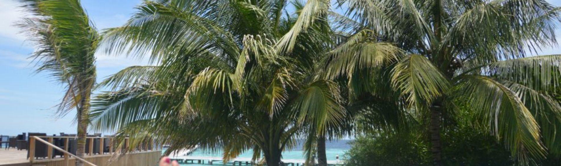 Tips voor de Malediven on a budget