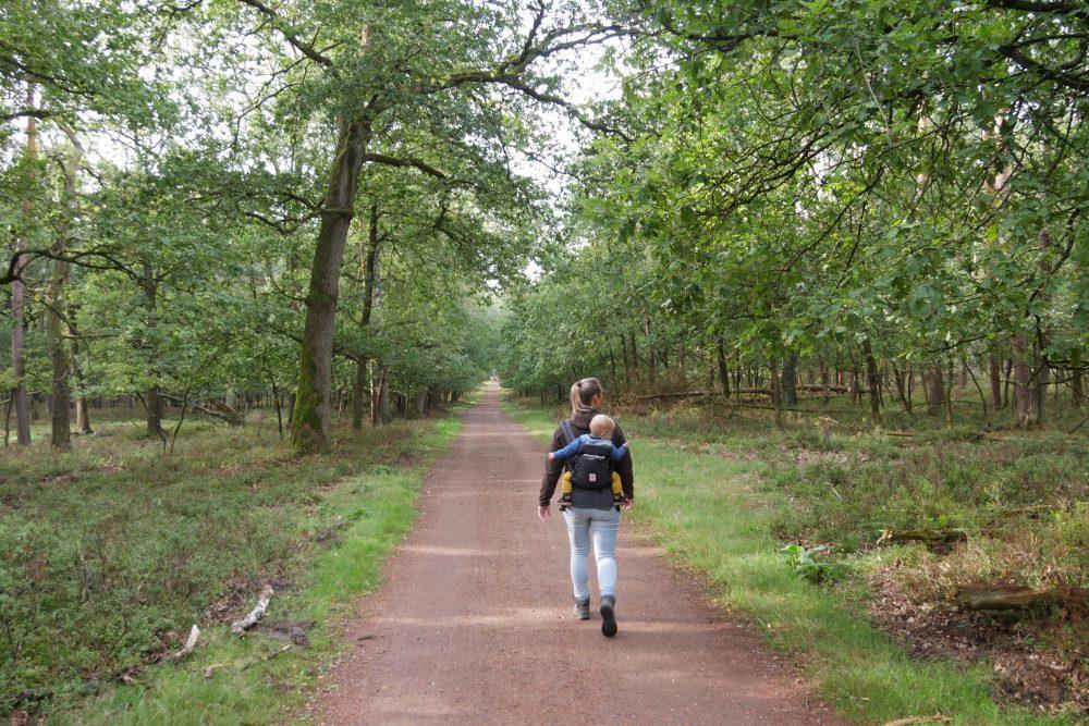 wandeling door het bos