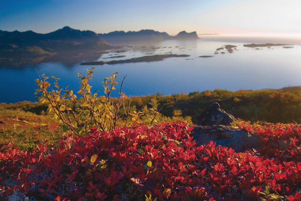 Lapland in de herfst
