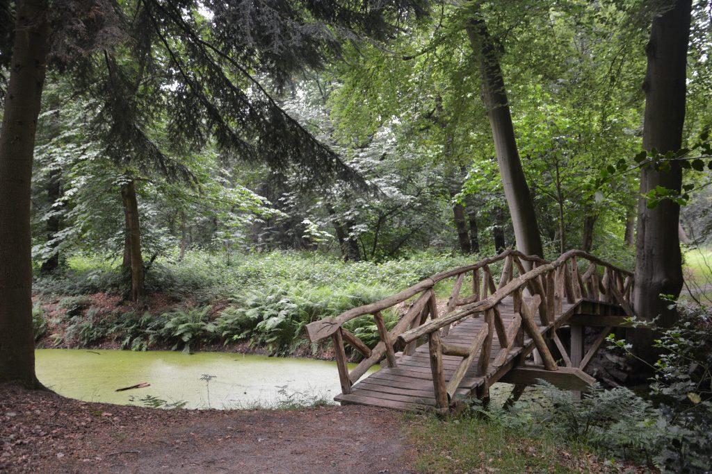 natuur in de omgeving van slochteren groningen