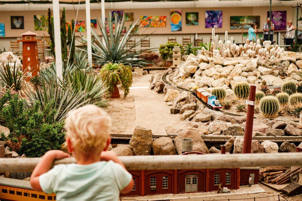 Vakantie in de Achterhoek Cactus oase