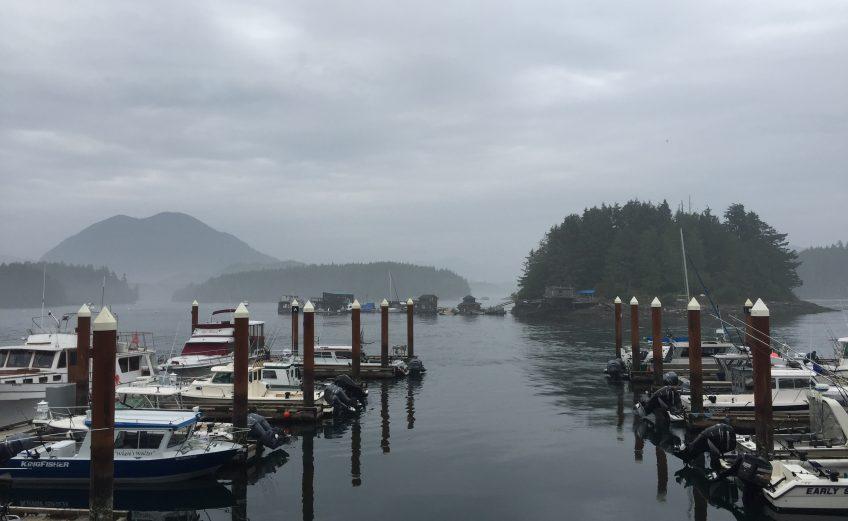 Op vakantie naar Vancouver Island met een baby