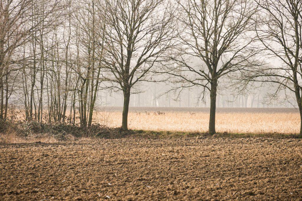 wandelen in het smalste stukje Nederland